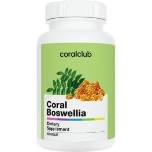 Bad Koral Bosvelliya Korallovyj Klub