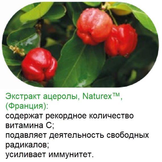 Acerola Bad Vitaminno Mineralnyj Kompleks Natural Vitamins Sibirskoe Zdorove