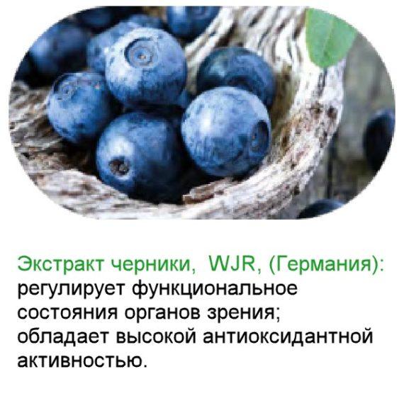 Chernika Sostav Bad Neurovision dlya zreniya Sibirskoe Zdorove 600