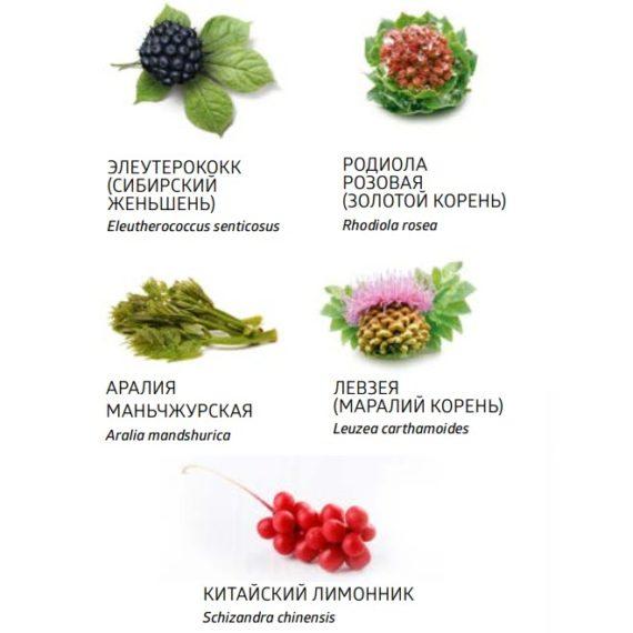 Natur Sostav Bad Energetik Adaptogen Adaptovit Sibirskoe Zdorove 660