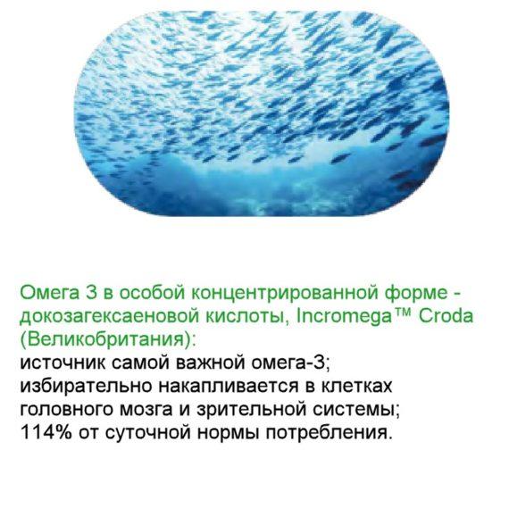 Omega Sostav Bad Neurovision dlya zreniya Sibirskoe Zdorove 600
