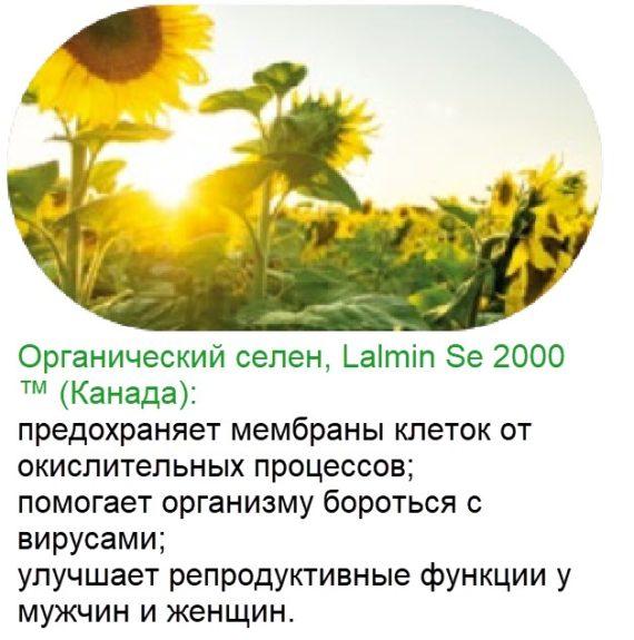 Selen Bad Vitaminno Mineralnyj Kompleks Natural Vitamins Sibirskoe Zdorove