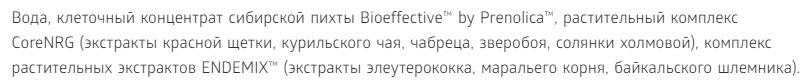 Sostav Bad universalnyj immunobuster SoreNRG Sibirskoe Zdorove 750