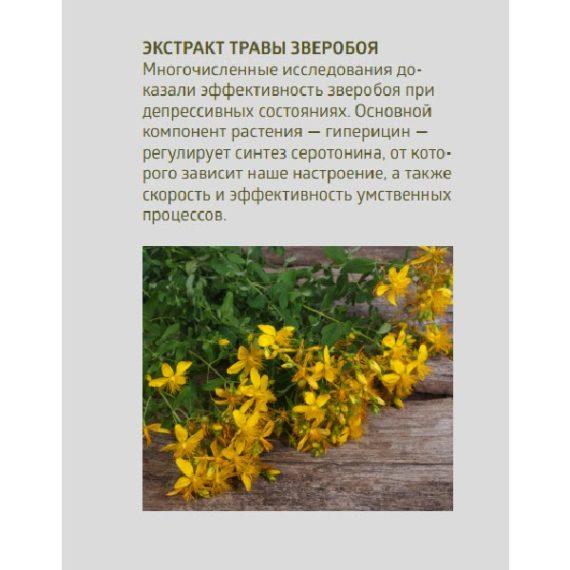 Sostav zveroboj Sinhrovital 2 Sibirskoe Zdorove