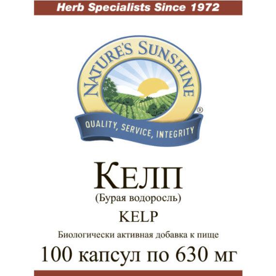 Etiketka 2 Bad dlya schitovidnoj zhelezy Kelp kompanii NSP