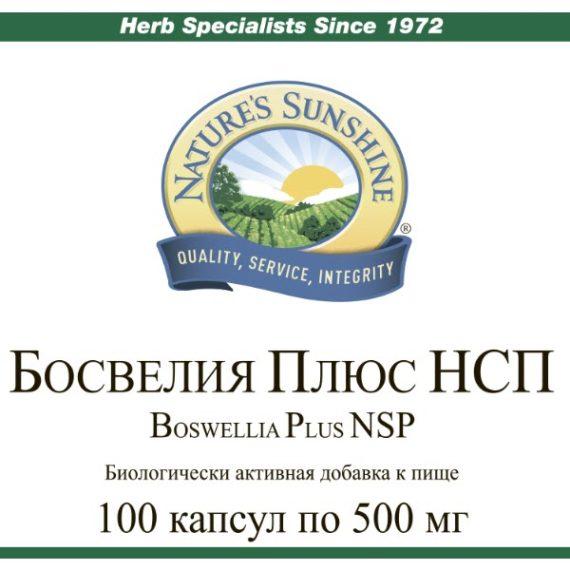 Etiketka 2 Bad dlya sustavov Bosveliya Plyus NSP
