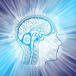 Бады для мозга, памяти, внимания