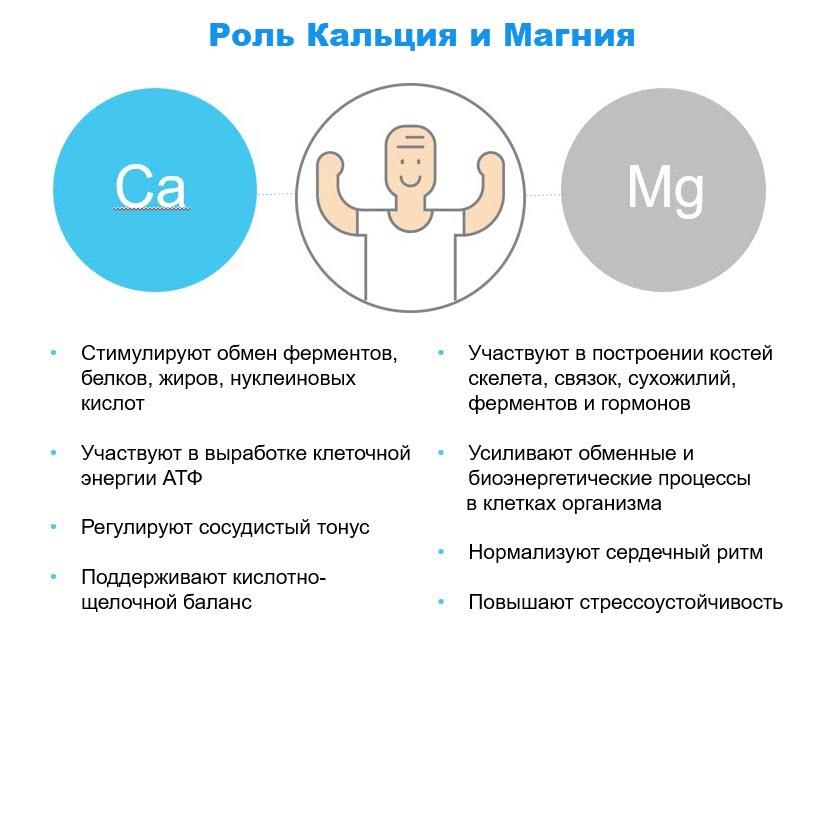 Rol kalciya i magniya