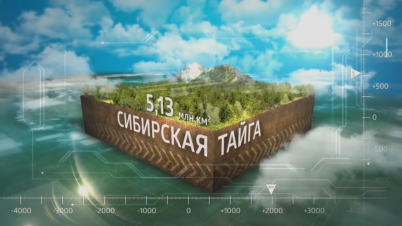 Sibirskaya Tajga Sibirskoe Zdorove