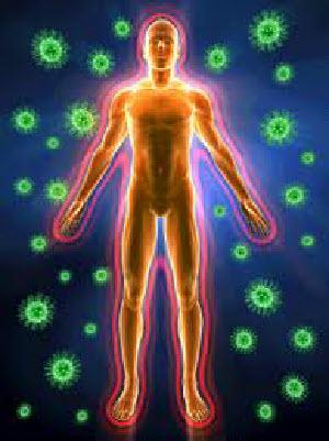 Immunitet Organizma Cheloveka