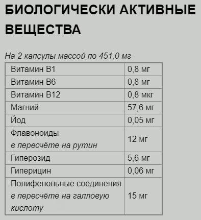 Nortiya Vizion Sostav