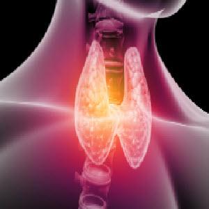 Бады для щитовидной железы
