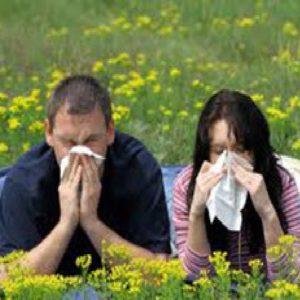 Бады от аллергии