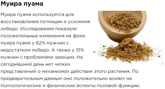 Muira Puama Sostav Bad Aktimen dlya muzhskogo zdorovya