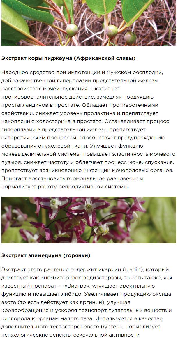 Obzor Chast 4 Peptidnyj kompleks Havinsona dlya muzhskogo zdorovya Revilab SL 09