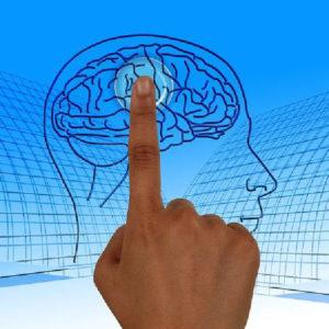 Bady dlya mozgov i pamyati