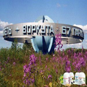 Vizion Biodobavki Vizhen v Vorkute