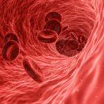 Specializirovannye kletki immuniteta